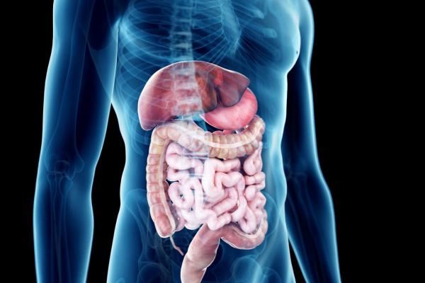 Sindrom iritabilnog crijeva i fizioterapija