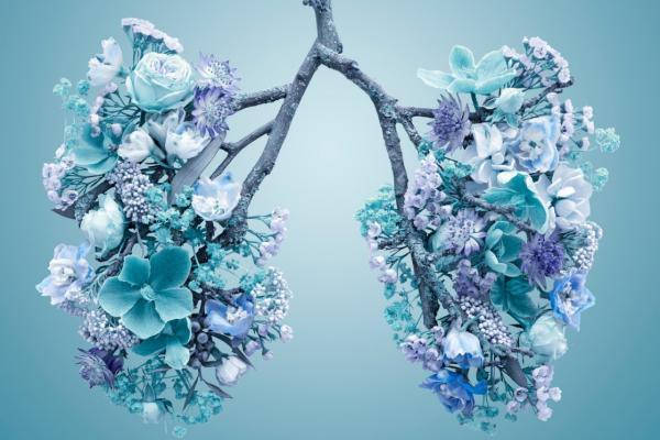 Zašto je važno abdominalno disanje?