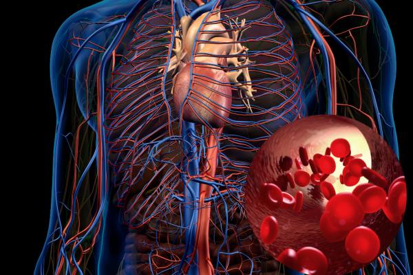 JADRANKA BROZD: Nužnost fizioterapije u post COVID vrijeme/2. dio